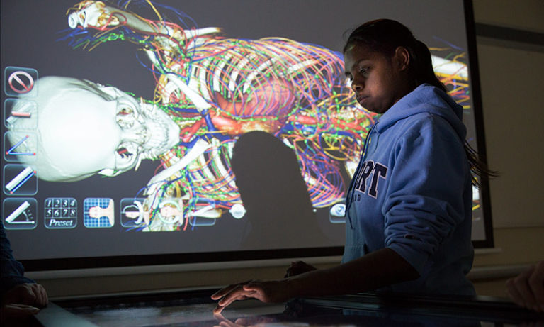 Student using an interactive medical display